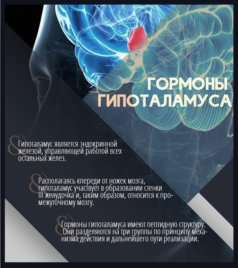 гормоны гипоталамуса либерины и статины биохимия
